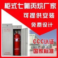 柜式七氟丙烷灭火装置 管网式七氟丙烷灭火装置100L/150L 厂家直销 QMQ4.2/70N 10