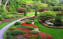 百色市园林工程设计施工园林景观建设绿化设计施工
