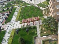 崇左市园林工程设计施工园林景观建设绿化设计施工