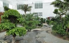 东兴市园林工程设计施工园林景观建设绿化设计施工