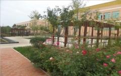 兴宁市园林工程设计施工园林景观建设绿化设计施工