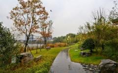 开平市园林工程设计施工园林景观建设绿化设计施工