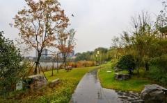 信宜市园林工程设计施工园林景观建设绿化设计施工