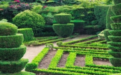 恩平市园林工程设计施工园林景观建设绿化设计施工