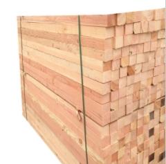 最新优惠花旗松 优质木碳化木原材料 现场加工花旗松木