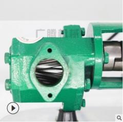 厂家直销 质保三年 手提式齿轮油泵 不锈钢材质 防爆齿轮泵热卖中 WCB220V-370W