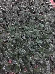 热销布叶篱笆,户外使用防紫外线 仿真景观草坪 仿真植物墙草墙 1*1米 .