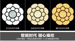 现代简约梅花圆形异型铁艺灯led吸顶灯卧室灯客厅灯