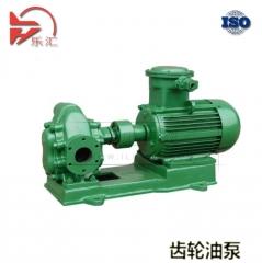 齿轮油泵 齿轮泵 油泵 LKCB