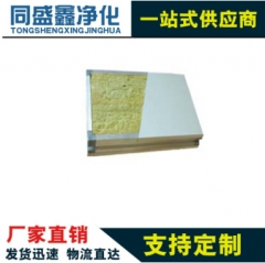 净化板手工板复合彩钢板玻镁岩棉防火保温吊顶隔断板