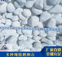 厂家直供园林景观白色鹅卵石 铺路白石子 黑色 白色石子 鹅卵石
