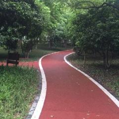 拜石专生产衢州信安湖绿道景观工程彩色沥青颗粒 透水沥青混凝土