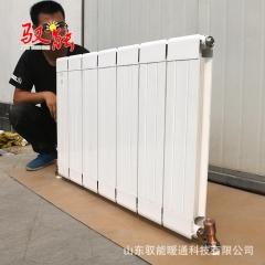 供应批发家用暖气片 定制各种铜铝复合散热器 注水式大水道散热器