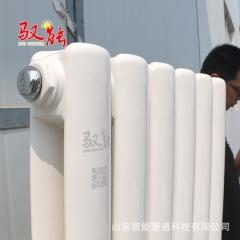 批发供应工程及家用壁挂式暖气片 30~60中心距 1600钢制散热器
