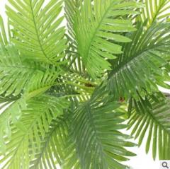 仿真植物五头小葵叶树过胶棕榈科葵叶细葵叶羽毛葵落地盆景批发