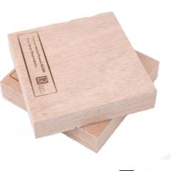 防水阻燃海洋板厂家直销符合BS1088标准船级社认证胶合板