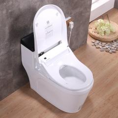 欧式智能连体电动马桶全自动加热烘干坐便器遥控夜光家用陶瓷坐厕