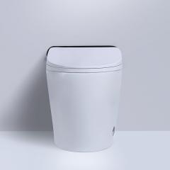 多功能卫浴智能马桶家用即热烘干座便器无电冲水一体坐厕工厂OEM
