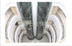 富士电梯公司/供应别墅电梯/四面全景观光电梯/100种颜色可定制 630KG