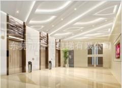 乘客电梯800KG/家用电梯1吨/1350KG会所酒店客梯/宾馆客梯 800KG